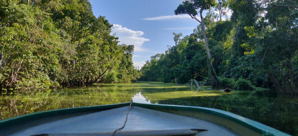 Borneon matka: Kinabatang joki Borneossa